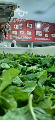 سبزی قورمه ، پیازداغ و سیرداغ در گروه خرید و فروش خدمات و کسب و کار در تهران در شیپور-عکس5