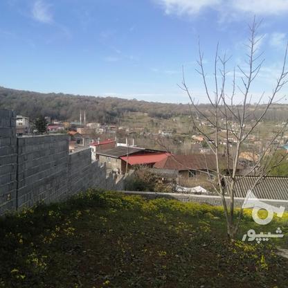 720 مترزمین باویوجنگل وروستادر روستای زرین آباد در گروه خرید و فروش املاک در مازندران در شیپور-عکس2