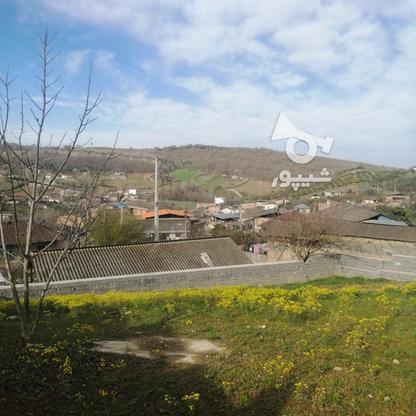 720 مترزمین باویوجنگل وروستادر روستای زرین آباد در گروه خرید و فروش املاک در مازندران در شیپور-عکس5