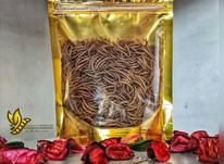 مولد میلورم،میل ورم خشک ،سوپرورم و مولد سوپر ورم در شیپور-عکس کوچک