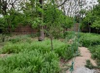 فروش باغچه 2800 متر در اندیشه فاز1 در شیپور-عکس کوچک