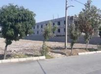 فروش زمین  1500 متر در شهرک ناز در شیپور-عکس کوچک