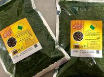 فروش و پخش انواع سبزیجات تازه آماده به طبخ در شیپور-عکس کوچک