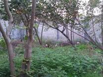 فروش زمین مسکونی 270 متر در آمل در شیپور