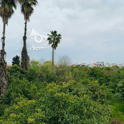 فروش ویلا 300 متر دوبلکس شهرکی استخردار سنددار در گروه خرید و فروش املاک در مازندران در شیپور-عکس3
