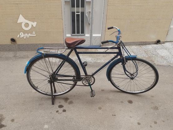دوچرخه چینی چرخ چینی  در گروه خرید و فروش ورزش فرهنگ فراغت در اصفهان در شیپور-عکس2