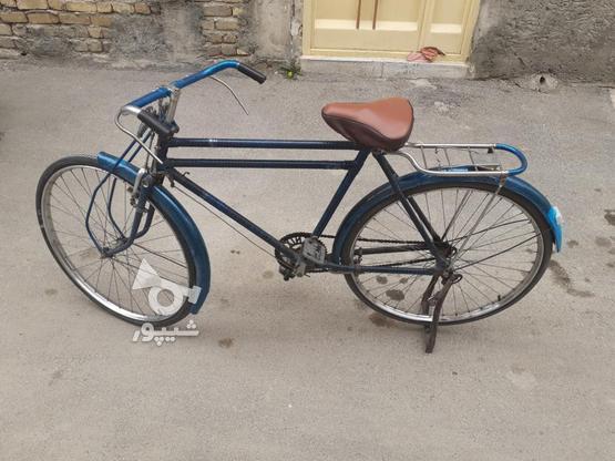 دوچرخه چینی چرخ چینی  در گروه خرید و فروش ورزش فرهنگ فراغت در اصفهان در شیپور-عکس1