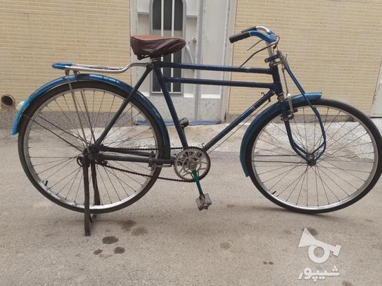 دوچرخه چینی چرخ چینی  در گروه خرید و فروش ورزش فرهنگ فراغت در اصفهان در شیپور-عکس3