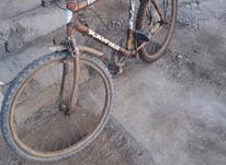دوچرخه معمولی در شیپور-عکس کوچک