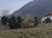 900 متر زمین مسکونی سنددار بین لاهیجان و لنگرود در شیپور-عکس کوچک