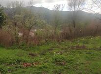 323 متر زمین مسکونی در سرچشمه لاهیجان در شیپور-عکس کوچک