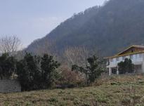 270 متر زمین مسکونی بین لاهیجان و لنگرود در شیپور-عکس کوچک