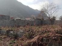 900 متر زمین مسکونی سنددار در لیالستان  در شیپور-عکس کوچک