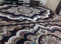 فرش 12متری عنصری. بابل حمل رایگان در شیپور-عکس کوچک