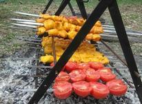 کباب پز های با دوام وتاشو در شیپور-عکس کوچک