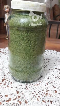 انواع سبزیجات خشک و ترشی در گروه خرید و فروش خدمات و کسب و کار در مازندران در شیپور-عکس5