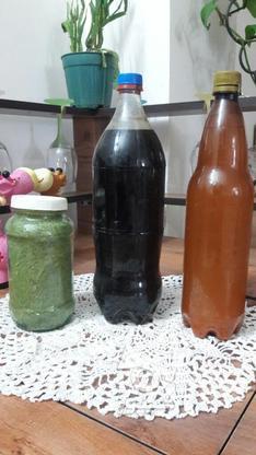 انواع سبزیجات خشک و ترشی در گروه خرید و فروش خدمات و کسب و کار در مازندران در شیپور-عکس4