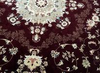 فرش 12متری  در شیپور-عکس کوچک