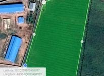 زمین زراعی در قره قشلاق سلماس در شیپور-عکس کوچک