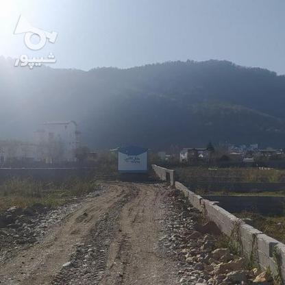 فروش زمین مناسب شهرک سازی در بندپی نوشهر در گروه خرید و فروش املاک در مازندران در شیپور-عکس5