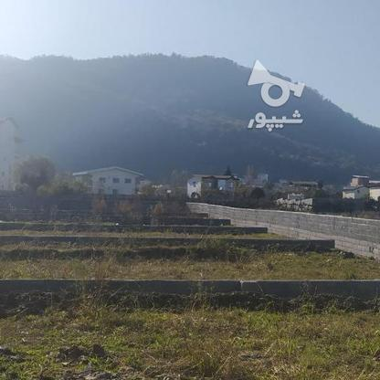 فروش زمین مناسب شهرک سازی در بندپی نوشهر در گروه خرید و فروش املاک در مازندران در شیپور-عکس7