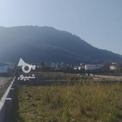 فروش زمین مناسب شهرک سازی در بندپی نوشهر در گروه خرید و فروش املاک در مازندران در شیپور-عکس6