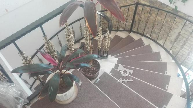 دوبلکس200 نوساز و نیمه ساخته.فقط گچ کاری و خرده کاری مانده. در گروه خرید و فروش املاک در زنجان در شیپور-عکس5