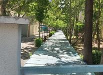 فروش خانه و کلنگی 250 متر در فرمانیه در شیپور-عکس کوچک