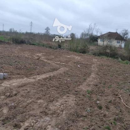 فروش زمین مسکونی 400 متر در رضوانشهر در گروه خرید و فروش املاک در گیلان در شیپور-عکس1