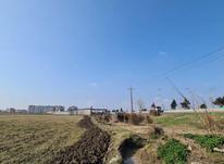فروش زمین زراعی 9000 متر در آمل در شیپور-عکس کوچک