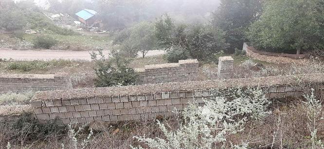 زمین ییلاقی  در گروه خرید و فروش املاک در مازندران در شیپور-عکس1