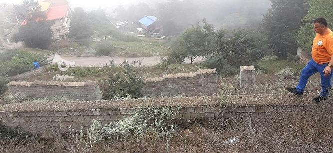 زمین ییلاقی  در گروه خرید و فروش املاک در مازندران در شیپور-عکس6
