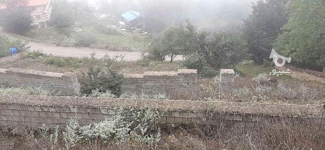 زمین ییلاقی  در گروه خرید و فروش املاک در مازندران در شیپور-عکس4