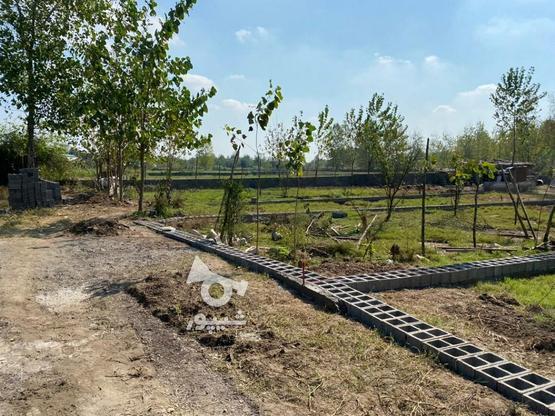 زمین شهرکی سندداردوردیوار310متر در گروه خرید و فروش املاک در گیلان در شیپور-عکس1