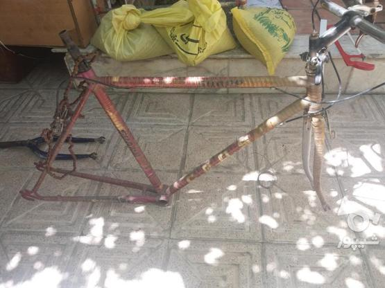 لوازم دوچرخه کورسی پژو 1 در گروه خرید و فروش ورزش فرهنگ فراغت در البرز در شیپور-عکس1
