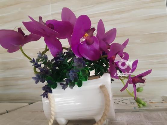 گل و گلدان مصنوعی  در گروه خرید و فروش لوازم خانگی در مازندران در شیپور-عکس2