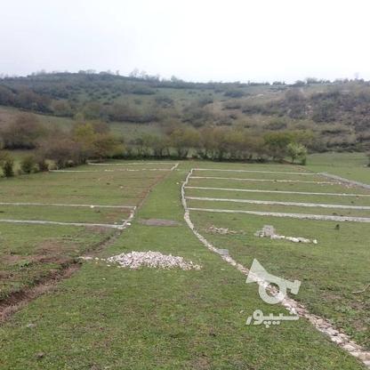 زمین مسکونی 500 متری در گروه خرید و فروش املاک در مازندران در شیپور-عکس1