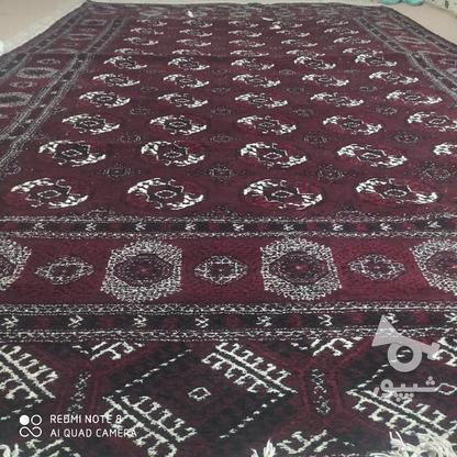 قالی دست بافت ترکمن در گروه خرید و فروش لوازم خانگی در گلستان در شیپور-عکس6