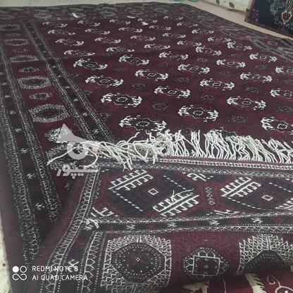 قالی دست بافت ترکمن در گروه خرید و فروش لوازم خانگی در گلستان در شیپور-عکس3