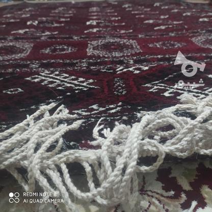 قالی دست بافت ترکمن در گروه خرید و فروش لوازم خانگی در گلستان در شیپور-عکس4