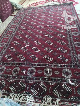 قالی دست بافت ترکمن در گروه خرید و فروش لوازم خانگی در گلستان در شیپور-عکس1
