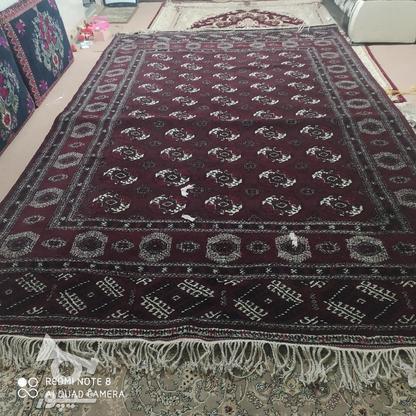 قالی دست بافت ترکمن در گروه خرید و فروش لوازم خانگی در گلستان در شیپور-عکس2