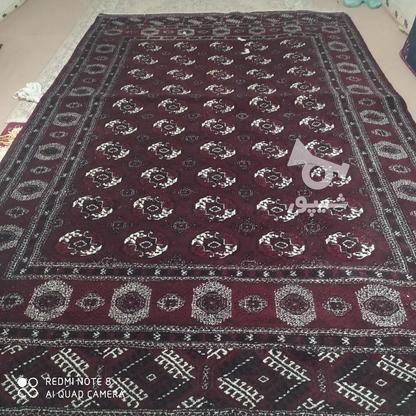قالی دست بافت ترکمن در گروه خرید و فروش لوازم خانگی در گلستان در شیپور-عکس5