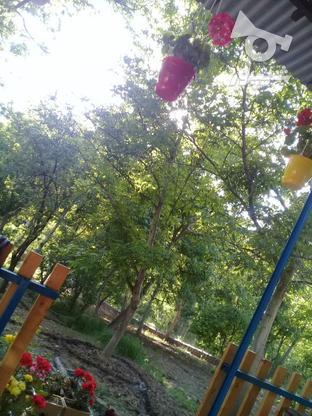 باغ و ویلا در گروه خرید و فروش املاک در تهران در شیپور-عکس3