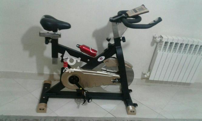 اسپینینگ. دوچرخه لاغری سنگین وزن   قیمت ویژه در گروه خرید و فروش ورزش فرهنگ فراغت در تهران در شیپور-عکس3