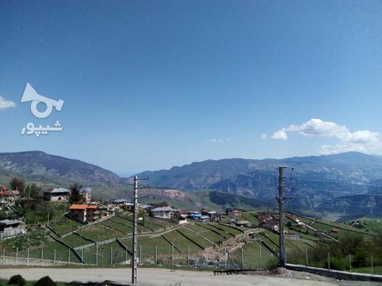 زمین مسکونی 250متری در گروه خرید و فروش املاک در مازندران در شیپور-عکس3