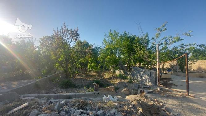 318 متر باغچه با درخت 30 ساله در ملارد+سهمیه آب کشاورزی  در گروه خرید و فروش املاک در تهران در شیپور-عکس1