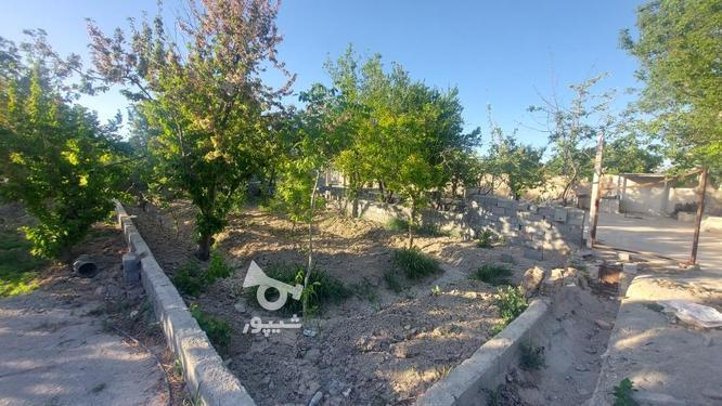 318 متر باغچه با درخت 30 ساله در ملارد+سهمیه آب کشاورزی  در گروه خرید و فروش املاک در تهران در شیپور-عکس3