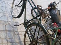 چرخ چینی سه مار در شیپور-عکس کوچک