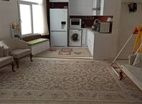 اجاره آپارتمان 60 متر در جمالزاده شمالی در شیپور-عکس کوچک